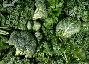 Como armazenar vegetais de folhas verdes, coentro e outros