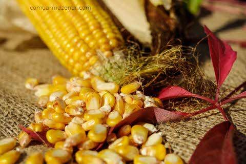 Como armazenar milho