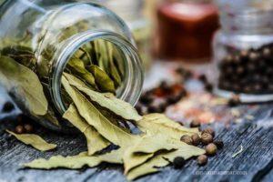 Como armazenar folha de louro seca