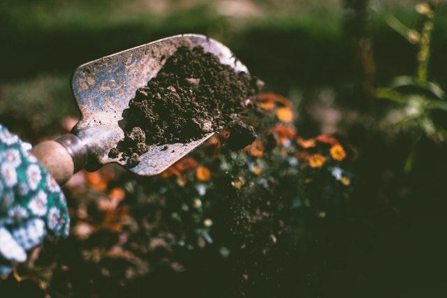 Mexendo na terra do jardim jardinagem casa