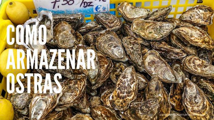 Como armazenar ostras frescas