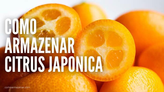 Como armazenar citrus japonica