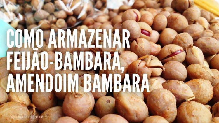 Como armazenar feijão-bambara, amendoim bambara