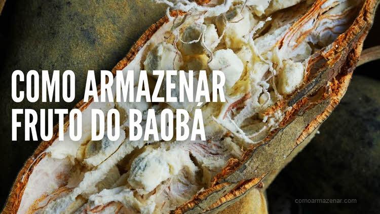 Como armazenar o fruto do baobá